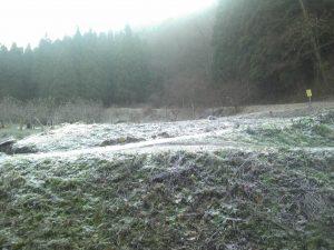 霜で真っ白!!